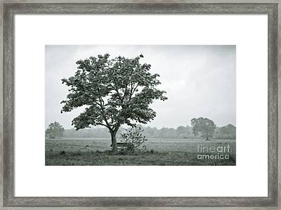 August In England Framed Print