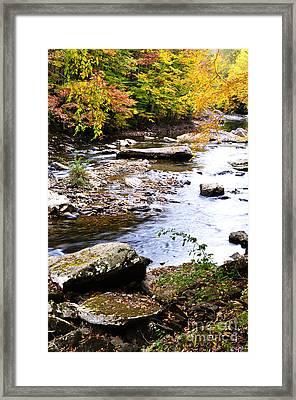 Autumn Cranberry River Framed Print