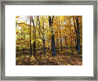 Autumn Day Framed Print by Christine Hafeman