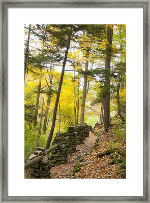 Autumn Hike Framed Print by Cindy Haggerty