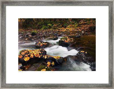 Autumn Passing Framed Print by Mike  Dawson