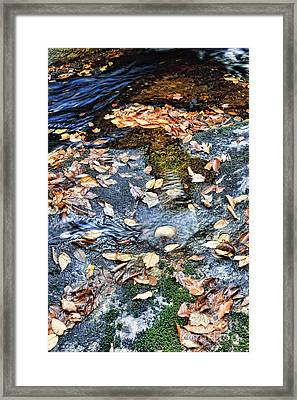 Autumn Scenic Framed Print by HD Connelly