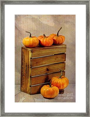Autumn Still Life Framed Print by Judi Bagwell