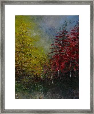 Autumn Sunshine Framed Print by Sherry Robinson