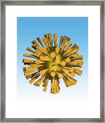 Avian Flu Virus Framed Print by Victor Habbick Visions