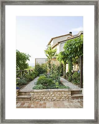 Backyard Garden Framed Print by Andersen Ross