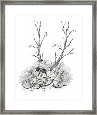 Bad Seed Framed Print by Jeff Gould