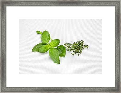 Basil And Thyme Framed Print
