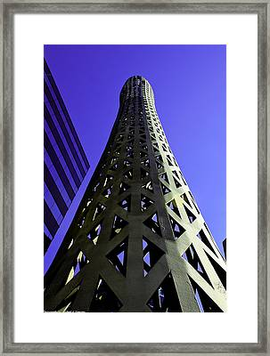Framed Print featuring the photograph Bat Chicago by Michael Nowotny