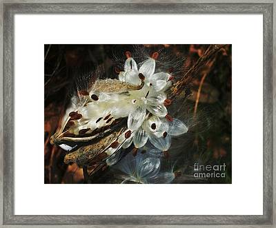 Beautiful Nature 2 Framed Print by Jasna Gopic