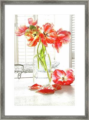 Beautiful Tulips In Old Milk Bottle  Framed Print by Sandra Cunningham