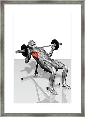 Bench Press Incline (part 2 Of 2) Framed Print