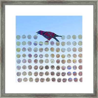 Bird Framed Print by Ann Powell