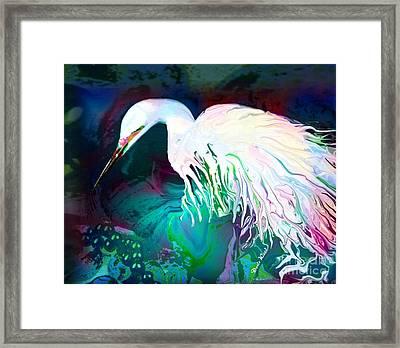 Bird Of Paradise Framed Print by Doris Wood