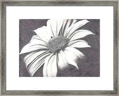 Black And White Flower Framed Print by Amanda Rhone