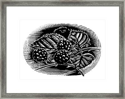Blackberries, Woodcut Framed Print