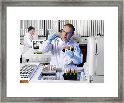 Blood Typing Framed Print by Tek Image