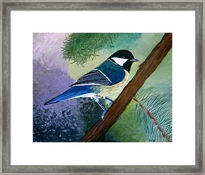 Blue Chickadee Framed Print by Angela Gale