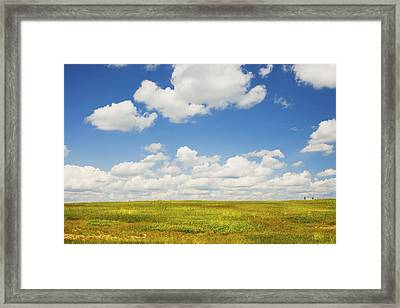 Blue Sky And Clouds Over Blueberry Field In Maine Framed Print