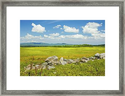 Blue Sky And Clouds Over Maine Blueberry Field Framed Print