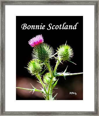 Bonnie Scotland Framed Print by Patrick Witz