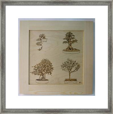 Bonsai Pyrographic Art Original Panel With Frame By Pigatopia Framed Print by Shannon Ivins
