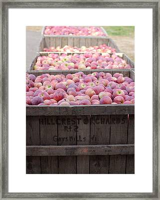 Framed Print featuring the photograph Bountiful by Linda Mishler