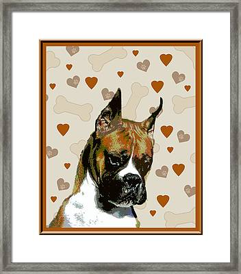 Boxer Framed Print by One Rude Dawg Orcutt