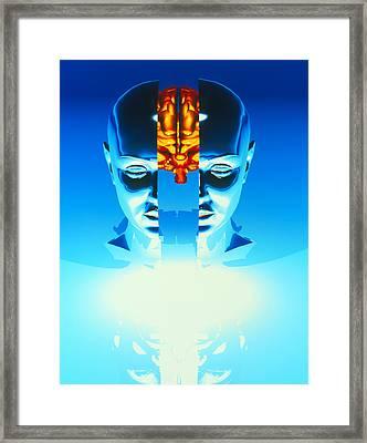 Brain Framed Print by Laguna Design