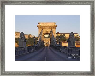 Bridge Framed Print by David Buffington