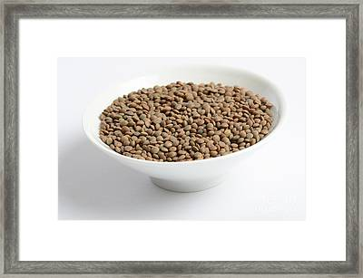 Brown Lentils Framed Print by Photo Researchers, Inc.
