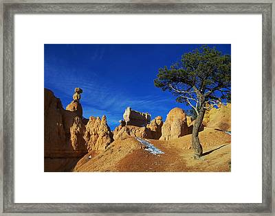 Bryce Canyon Utah Framed Print