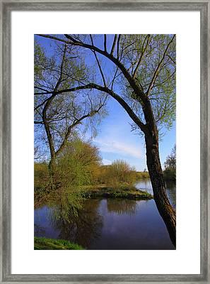 Bug River Framed Print