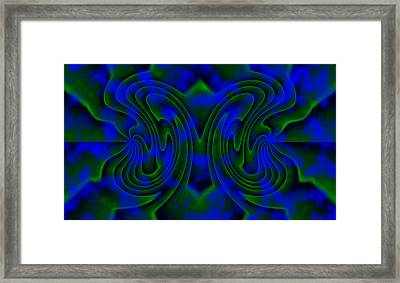 Butterfly Framed Print by Christopher Gaston