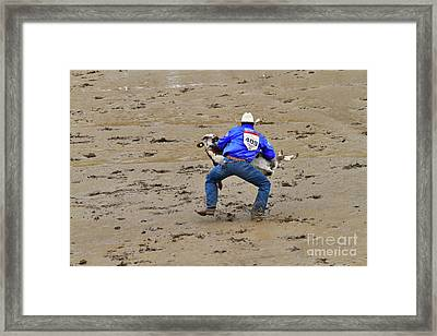 Calf Roping At The Calgary Stampede Framed Print by Louise Heusinkveld