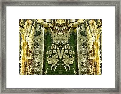 Carschach008 Framed Print