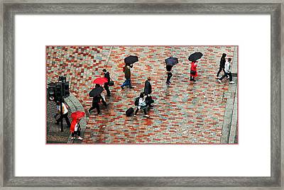 Caught In The Rain Framed Print by Barry Hayton