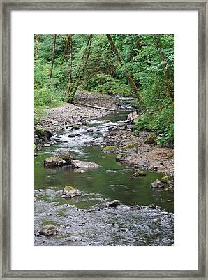 Cedar Creek Framed Print by Gene Ritchhart