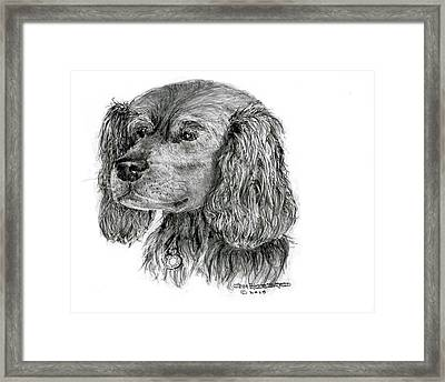 Framed Print featuring the drawing Cocker Spaniel by Jim Hubbard