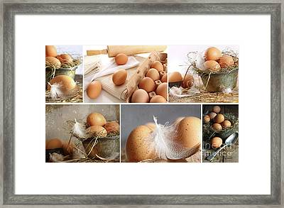 Collage Of Brown Eggs Images  Framed Print by Sandra Cunningham