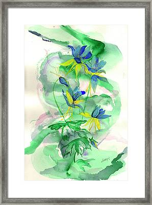 Columbines Framed Print by Linda Palmer