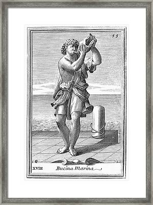 Conch Shell Trumpet, 1723 Framed Print