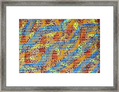 Corrugated Color Framed Print by TB Schenck