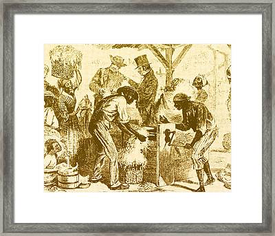 Cotton Gin, 19th Century Framed Print by Science Source