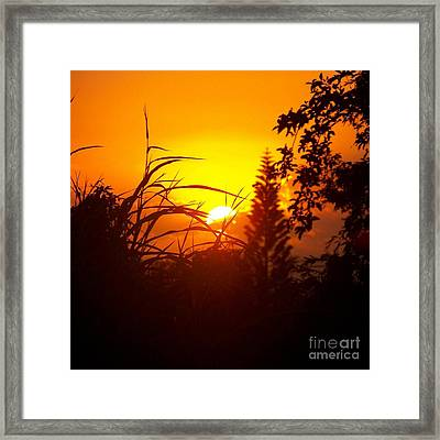 Framed Print featuring the photograph Coucher De Soleil by Sylvie Leandre