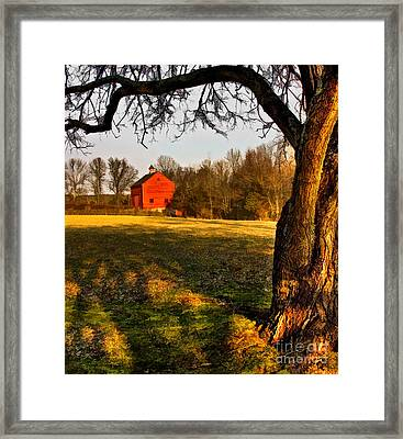 Country Life Framed Print by Susan Candelario