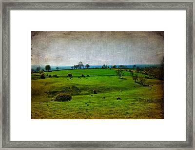 Countryside Framed Print by Svetlana Sewell