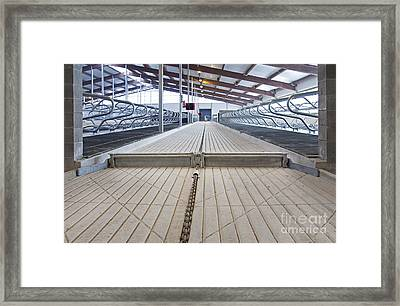 Cowshed Dung Scraper Framed Print