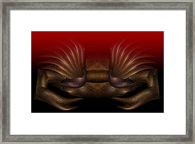 Crab Framed Print by Christopher Gaston