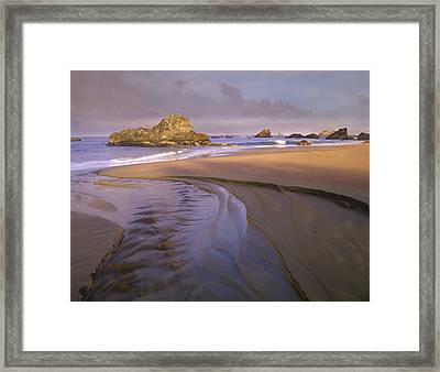 Creek Flowing Into Ocean At Harris Framed Print by Tim Fitzharris